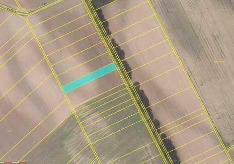 Dražba zemědělského pozemku (2 953 m2) - podíl 1/1