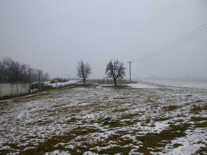 Podíl na pozemcích v k.ú. Mackovice, okr. Znojmo