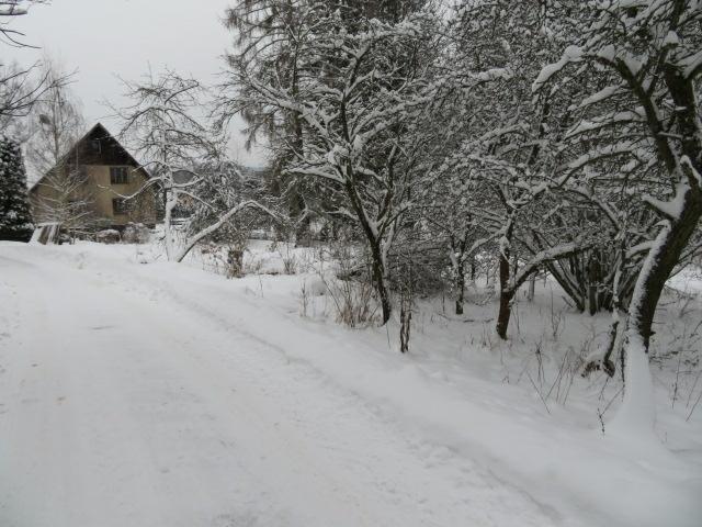 pozemek v obci Sadov, okres Karlovy Vary