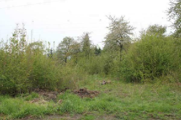 Pozemek o velikosti  4735 m2, Brná nad Labem