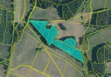 Dražba pozemků (19 339 m2) - podíl 1/33, okr.