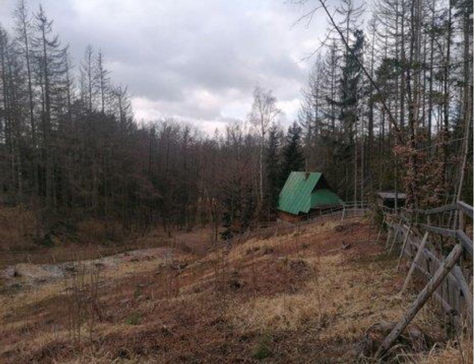 Podíl 1/2 rekreační chaty v k.ú. Vlkov u Osové