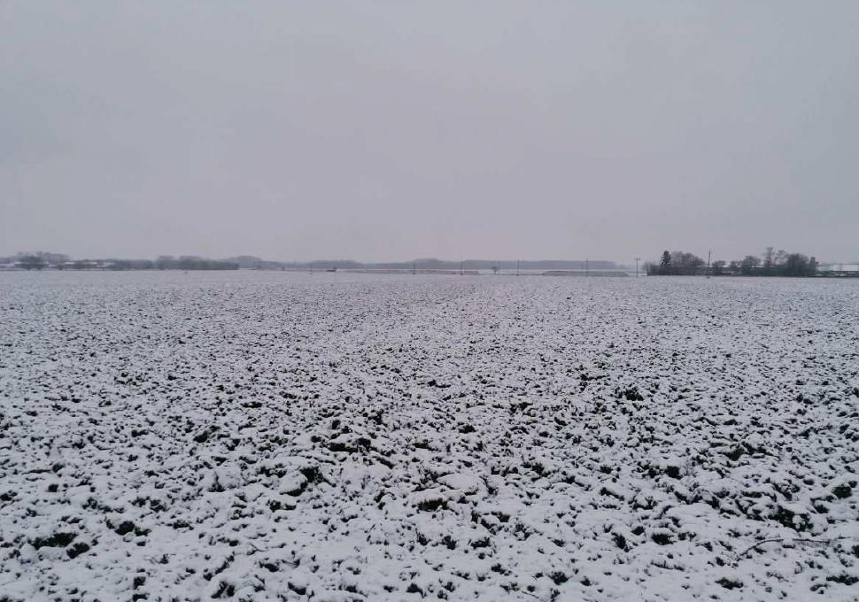 Podíl 11/96 pozemků v kú Lešany u Prostějova, okr.