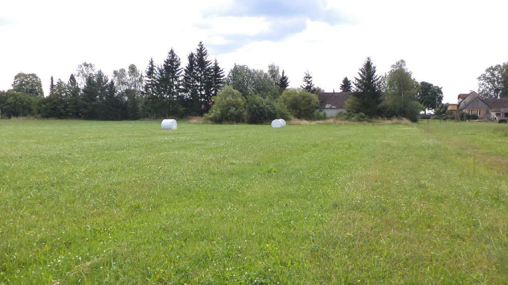 Pozemek o velikosti  3699 m2, Hranice u Nových
