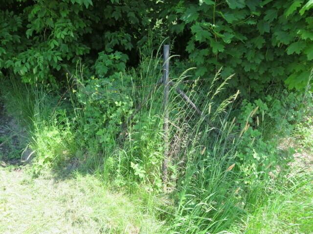 Pozemek (trvalý travní porost) v obci Varnsdorf,