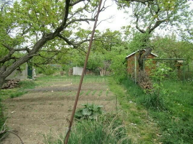 Pozemek o velikosti  3135 m2, Dolní Chabry, podíl